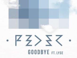 Feder Goodbye ft. Lyse Cover Bi cut