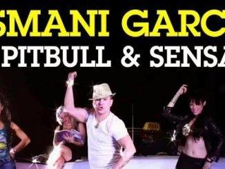 Pitbull feat. Sensato Osmani Garcia El Taxi