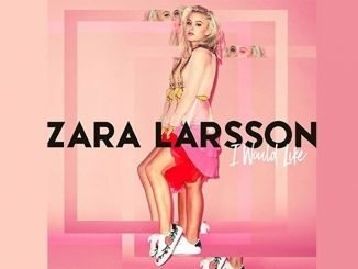 I Would Like Zara Larsson