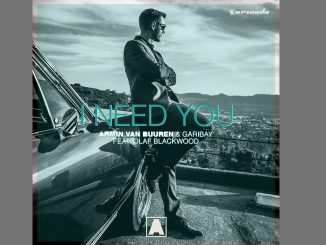Armin van Buuren Garibay I Need You feat. Olaf Blackwood