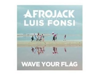Afrojack feat. Luis Fonsi Wave Your Flag