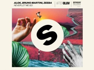 Alok Bruno Martini Zeeba Never Let Me Go