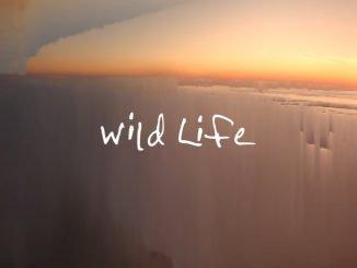 OneRepublic Wild Life 1