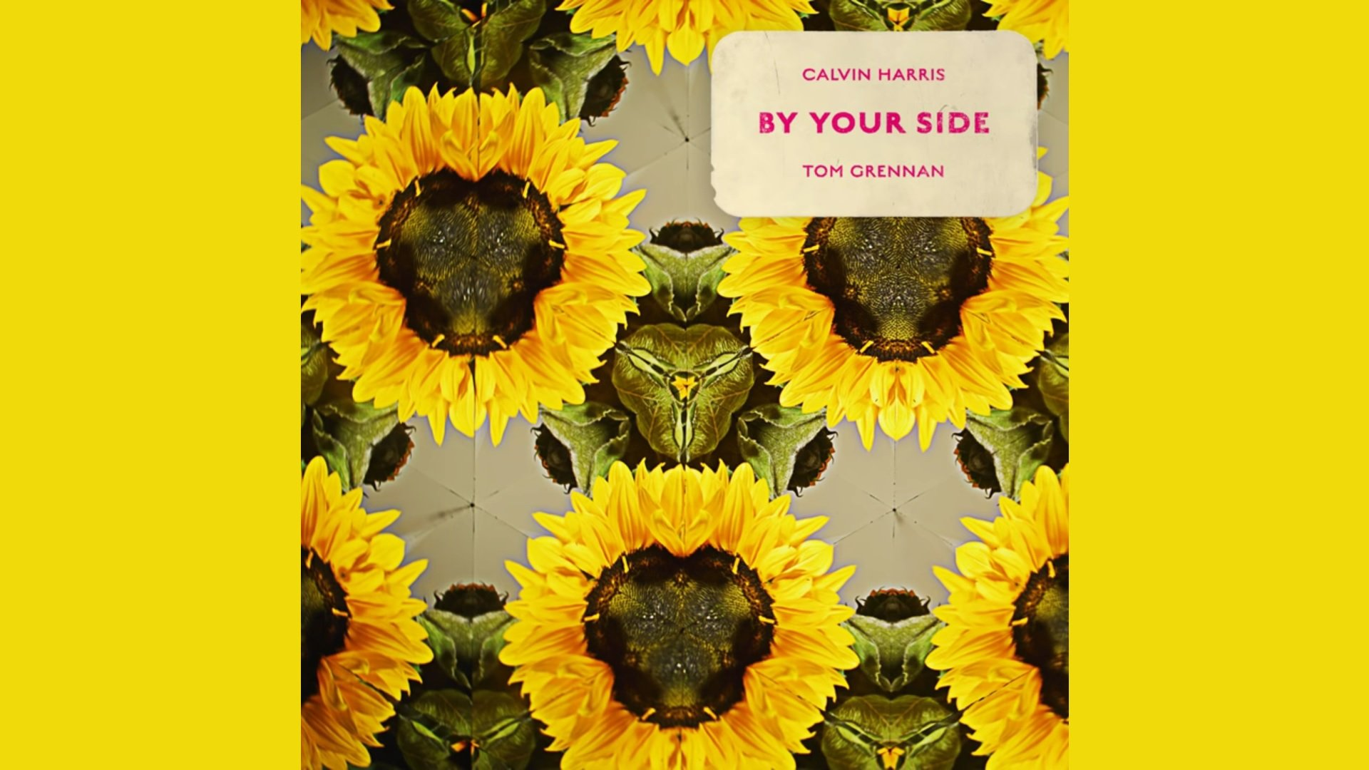 CALVIN HARRIS BY YOUR SIDE FEAT. TOM GRENNAN